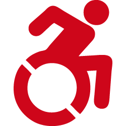 Disabilità motorie